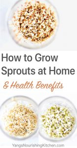 {Video} Instruction and recipe on how to grow sprouts at home. You can use a mason jar and simple supplies to make your own sprouting jar. Make sure to use good quality sprouting seeds to grow your sprouts successfully. You can buy sprouting seeds from regular grocery stores or online once you know what you are looking for. Home-grown sprouts are fresh, nutrient-dense and live superfood.