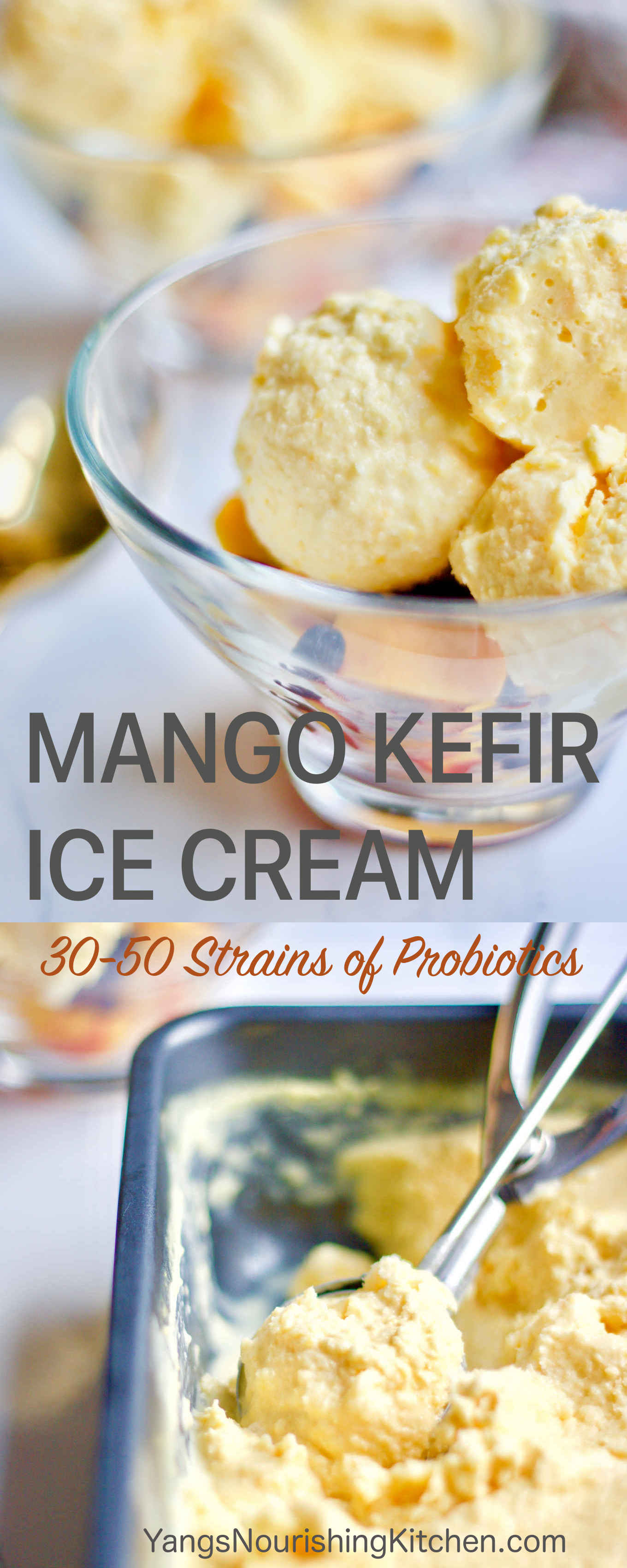 {Fermented | Video on Blog} You will love this mango kefir ice cream for the probiotic benefits. Real milk kefir grains contain 30 to 50 strains of probiotic bacteria and yeast combined. If you are looking for a summer dessert to make with your milk kefir grains, this mango kefir ice cream is a tasty treat and uses only 4 ingredients. Mango and kefir are a perfect match in flavour. I will also show you some tips for achieving the best results without using an ice cream maker.