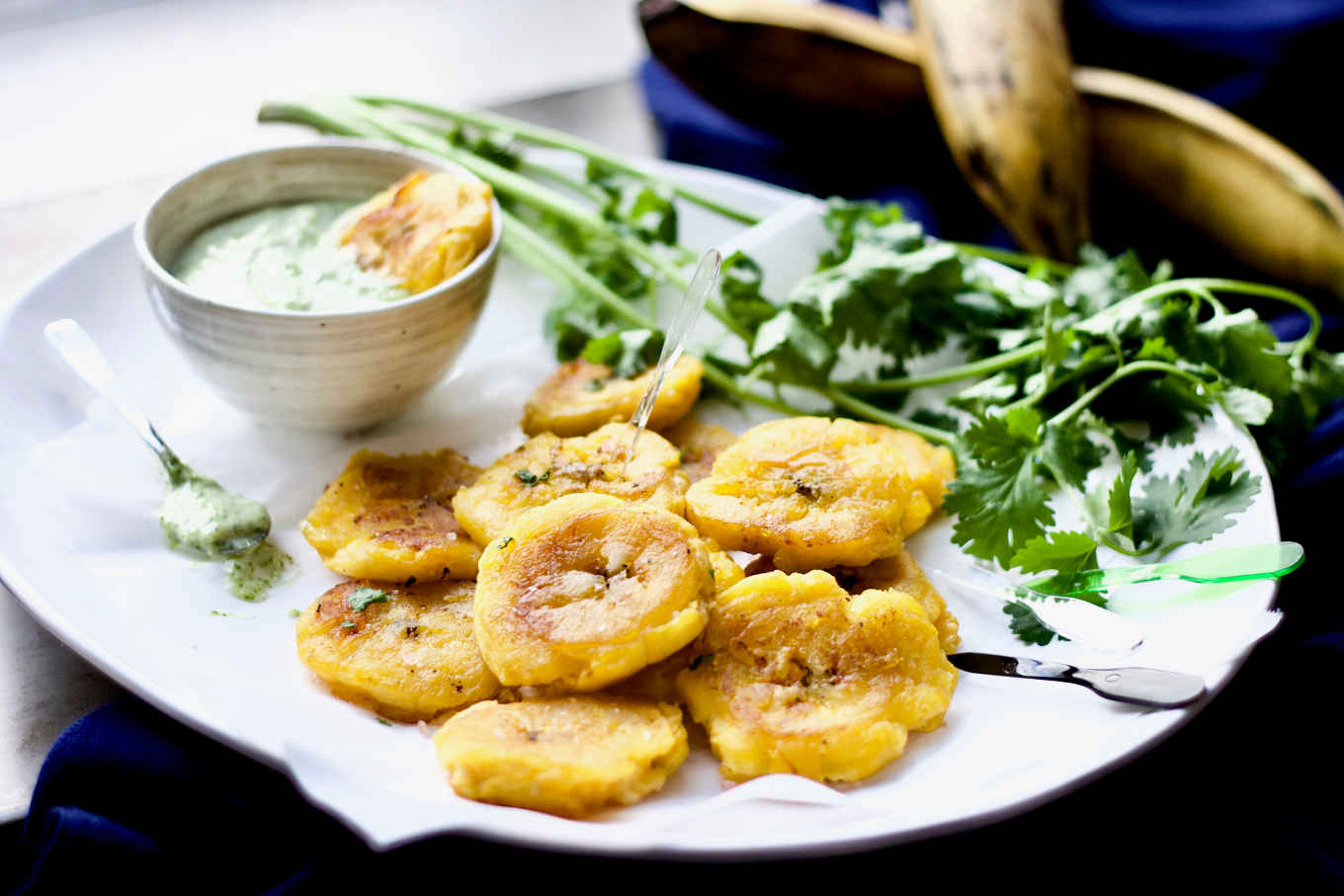 "A closer up shot of the tostones/patacones /w garlic cilantro mayo, from the ""Latin American Paleo Cooking"" cookbook."