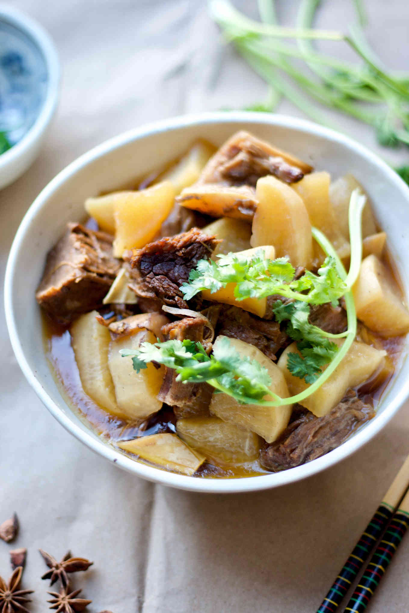 Instant Pot beef brisket stew with daikon radish, served in a bowl.